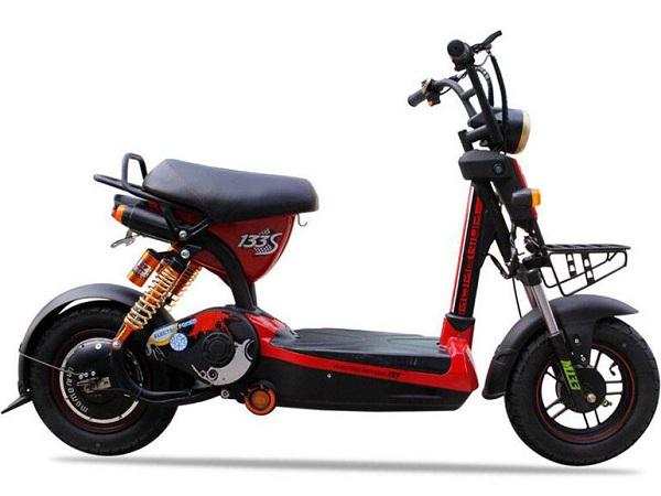 Các mẫu xe đạp điện giá rẻ tốt nhất hiện nay.