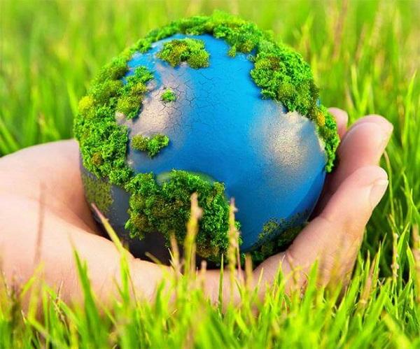 Xe điện sử dụng nguồn năng lượng sạch, góp phần bảo vệ môi trường.