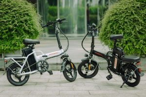 Báo giá xe đạp điện gấp Homesheel FTN T5-10Ah